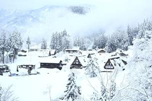 雪の相倉合掌造り集落の写真素材 [FYI04628834]