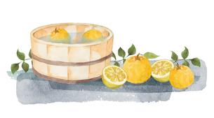 柚子と風呂桶の水彩画のイラスト素材 [FYI04628840]