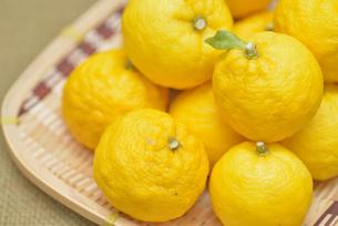 ゆず 柚子の写真素材 [FYI04629206]