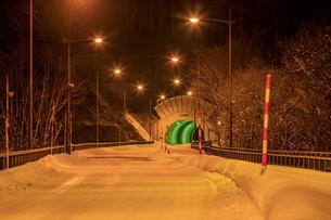 福島県 野鳥の森トンネルの写真素材 [FYI04629278]
