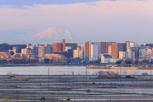 茨城県 土浦より富士山を望むの写真素材 [FYI04629385]