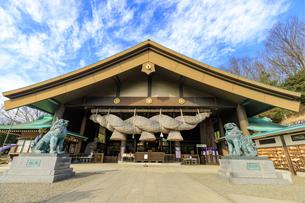 茨城県 出雲大社 拝殿の写真素材 [FYI04629387]