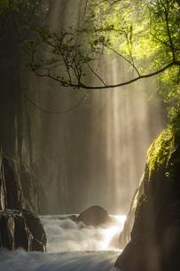 初夏の菊池渓谷の写真素材 [FYI04629500]