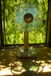 扇風機とグリーンカーテンの写真素材 [FYI04629526]