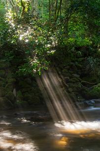 立岩水源の光芒の写真素材 [FYI04629712]