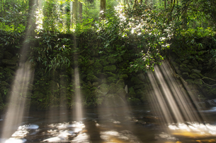立岩水源の光芒の写真素材 [FYI04629713]