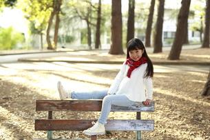 ベンチでポーズをとる女の子の写真素材 [FYI04629770]