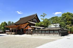 八坂神社の写真素材 [FYI04629849]