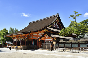 八坂神社の写真素材 [FYI04629850]