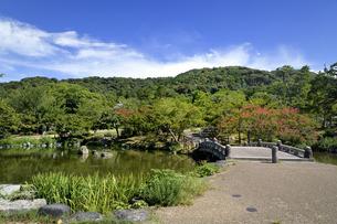 丸山公園の写真素材 [FYI04629852]
