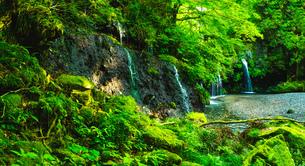 陣馬の滝の写真素材 [FYI04629868]