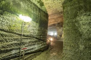 西伊豆 伊豆石採掘場跡 室岩洞の写真素材 [FYI04629913]