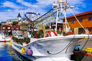 イカ釣り漁船の写真素材 [FYI04630131]
