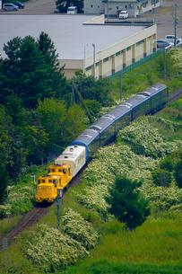 遠軽駅へ向かうロイヤルエクスプレスの写真素材 [FYI04630476]
