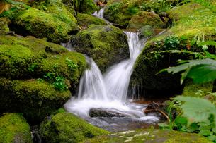 小さな滝の写真素材 [FYI04630477]