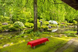 玉川寺庭園の写真素材 [FYI04630628]