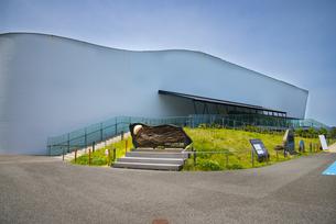 加茂水族館(クラゲドリーム館)の写真素材 [FYI04630956]
