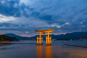 夕暮れ時の厳島神社大鳥居の写真素材 [FYI04631123]