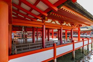 厳島神社 客神社・祓殿の北西面の写真素材 [FYI04631164]