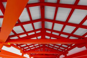 厳島神社 東廻廊の化粧屋根裏天井の写真素材 [FYI04631202]