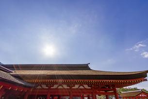 厳島神社 御本社祓殿の檜皮葺と太陽の写真素材 [FYI04631203]