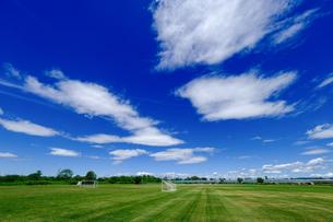 青空と芝生の写真素材 [FYI04631853]