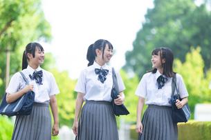 会話をしながら歩く女子高生の写真素材 [FYI04632029]