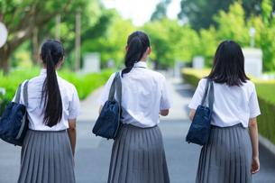 女子高生のポートレートの写真素材 [FYI04632031]
