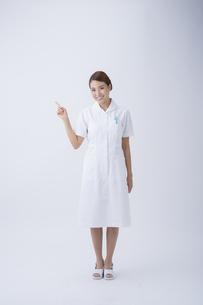 看護師の写真素材 [FYI04632139]