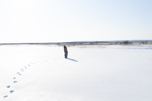 雪の上で空を見上げる若い女性の写真素材 [FYI04632311]