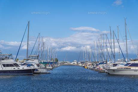 ヨットの休日の写真素材 [FYI04632393]