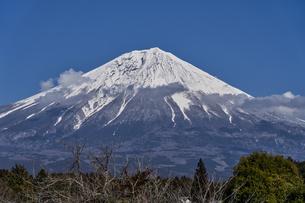 富士宮から見る富士山の写真素材 [FYI04632396]