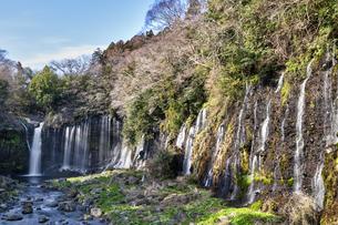 富士宮 白糸の滝の写真素材 [FYI04632399]