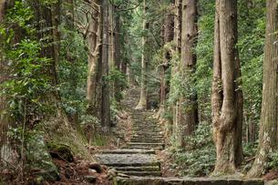 熊野古道 那智大門の写真素材 [FYI04632429]