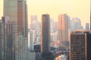 淡いオレンジ色の太陽の光に輝く東京の街並みの写真素材 [FYI04632481]