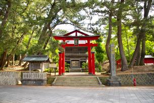 日枝神社山王鳥居の写真素材 [FYI04632546]