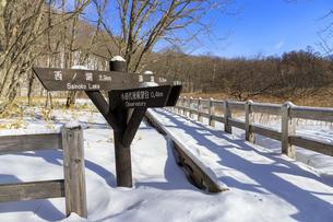 栃木県 奥日光 冬のハイキングコースの写真素材 [FYI04632675]
