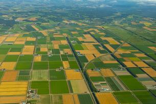 上空から見る千歳郊外の畑の写真素材 [FYI04632886]