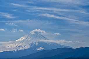 大野山から見る富士山の写真素材 [FYI04633243]