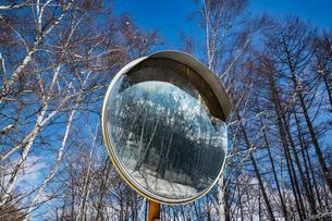 乗鞍高原の雪景色の写真素材 [FYI04633268]