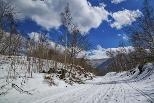 乗鞍高原の雪景色の写真素材 [FYI04633271]