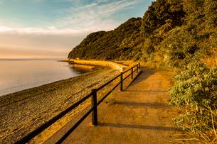 【香川県 東かがわ市】鹿浦越からみる夕方の瀬戸内海の自然風景の写真素材 [FYI04633302]