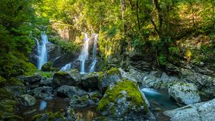 【徳島県 海部郡】 轟九十九滝の自然風景の写真素材 [FYI04633309]
