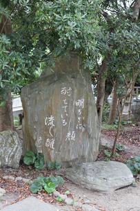 淡嶋神社の写真素材 [FYI04633414]