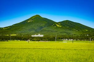 磐梯山と稲穂の写真素材 [FYI04633484]