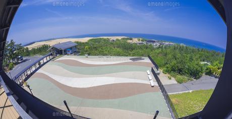 鳥取県 風景 鳥取砂丘の写真素材 [FYI04633552]