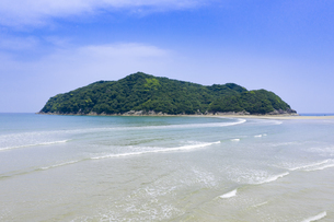 幸島サル生息地の写真素材 [FYI04633615]