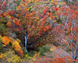 駒止の滝の写真素材 [FYI04633717]
