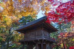 古刹を彩る平林寺の紅葉の写真素材 [FYI04633722]