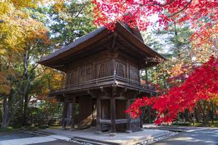 古刹を彩る平林寺の紅葉の写真素材 [FYI04633723]
